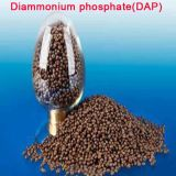 Fosfato do Diammonium (DAP)