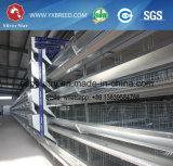 Type cages du matériel H de fermes avicoles de poulet de couche