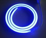 결혼식 훈장 2835 120LEDs/M LED 밧줄 빛 네온