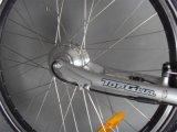 bici elettrica del blocco per grafici della lega di alluminio 700c con En15194 i certificati (JSL036A-4)
