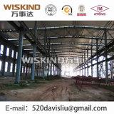 Große Überspannungs-Lager mit Stahlkonstruktion