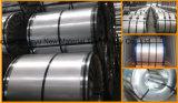常連のスパンコールのGIは鋼鉄コイルに電流を通した