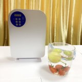 Máquina da beleza de Skincare pela máquina HK-A1 de Ozônio Gerador