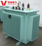 100kVA Oil Immergé Transformer / Transformer Electric Power