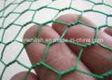 Beruf-Fabrik-Fertigung-sechseckige Draht-Filetarbeit für führende Tiere