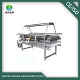 Transporte de rolo do produto comestível de aço inoxidável da alta qualidade do fabricante