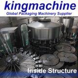 Cadena de producción de relleno automática vendedora caliente del agua mineral de Monoblock
