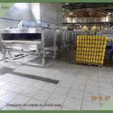 Botellas / Latas túnel Pasteurizador