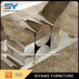 現代ステンレス鋼のフィートの大理石のダイニングテーブル