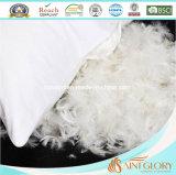 Amortiguador abajo llenado blanco de la pluma del ganso del pato del amortiguador decorativo cómodo del sofá