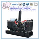 Yangdongエンジンを搭載する11kVA-33kVA防音の開いた電気発電機