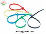 Cintas plásticas de nylon de travamento automático coloridas de RoHS