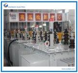 11kv triphasés économiseurs d'énergie Plein-Scellés par usine 415V ramènent le transformateur électrique oléiforme
