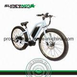 6061 Legierungs-Aluminiumrahmen-elektrisches Fahrrad mit Lithium-Batterie