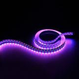 Lumière de bande flexible à deux lignes de 240LEDs/M SMD2835 RGBA DEL