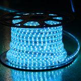 Gelbes Seil-Licht der Farben-60LEDs SMD5050 220V IP65 LED