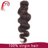 Grampo de cabelo humano brasileiro Multicolor de Remy na extensão do cabelo