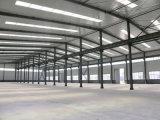 Estructura de acero de la estructura de acero de la fábrica de la fábrica profesional material ligera de la vertiente