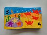 Libro de la tarjeta de la alta calidad del servicio de impresión de la fábrica para los niños que aprenden figuras