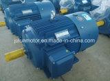 Alta efficienza di Ie2 Ie3 motore elettrico Ye3-315m-10-55kw di CA di induzione di 3 fasi