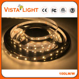 IP20 DC24V RGB LED de luz de tira de clubes nocturnos