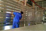 Moteur externe pour la porte en aluminium d'obturateur de rouleau (RM-600)