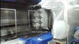 Fauncのロボット自動吹き付け塗装のペンキか絵画機械