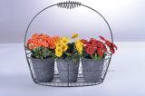 La flor artificial clasificó la margarita en el crisol de papel de Mache con el soporte del hierro para la decoración