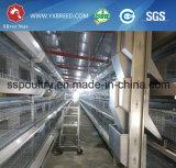 Gabbie del pollo della strumentazione del pollame per la Tanzania