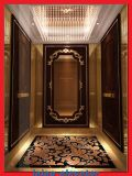 전송자 엘리베이터를 위한 중심 오프닝 및 수용량 630kg