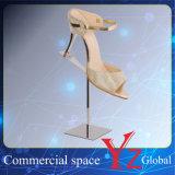 Schuh-Ausstellungsstand-Edelstahl-Schuh-Zahnstangen-Schuh-Standplatz-Schuh-Regal-Schuh-Halter-Schuh-Ausstellung-Schuh-Aufsatz der Schuh-Bildschirmanzeige-Zahnstangen-(YZ161511)