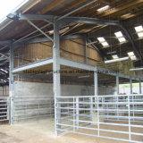 L'agricoltura della mucca della struttura d'acciaio si è liberata di per la vendita