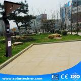 Indicatore luminoso chiaro solare solare del giardino del fornitore diplomato Soncap 20W LED del Ce ccc dell'indicatore luminoso del giardino di Treding con il video