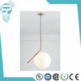 Nieuw BinnenLicht, het Licht van de Tegenhanger van de Kosmos, LEIDENE Decoratieve Lamp