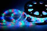 Luz da corda do diodo (Apartamento 3 Fios) (SRFL-3W)