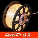 Lumière d'ensemble (HS-CHG-01)