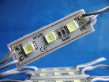 Hotsale 4 saltara 5054 el módulo impermeable de la C.C. 12V LED de SMD