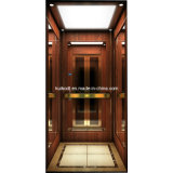 Elevator domestico con Good Price (KJX-BS04)