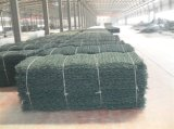 Treillis métallique de Gabion avec Gi/PVC enduit (JH-L02)