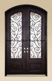 Portas de entrada dianteiras dobro decorativas exteriores do ferro feito