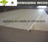 El precio de la madera contrachapada del anuncio publicitario 16m m es Lowes para la India Markdet