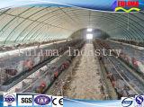 Vorfabriziertes Stahlkonstruktion-Huhn-Haus/Geflügel bringen unter (FLM-F-012)