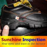 靴のスポーツの靴の人の靴の品質管理/点検
