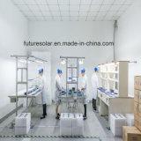 Панель солнечных батарей Futuresolar 100W поставщика Китая самая лучшая Mono с самым лучшим качеством