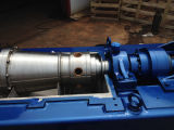 Lw250*700 horizontaler Typ Spirale-Einleitung-Sedimentbildung-Trennzeichen für Wasserbehandlung