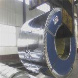 中国の製造者JIS G3141は穏やかな鋼鉄コイルを冷間圧延した