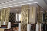 Самомоднейший экран рассекателя комнаты нержавеющей стали для украшения гостиничного номера