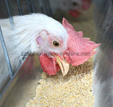 Las aves de corral verticales del mezclador del fertilizante de la alta uniformidad introducen el mezclador