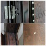 Porta de aço do metal da porta da segurança da porta exterior da porta (SC-S146)