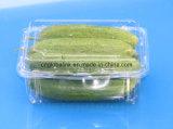 Contenitore di imballaggio di plastica del grado dell'alimento per animali domestici della casella di imballaggio di plastica per il cetriolo 500 grammi